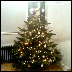 elldrew_christmas_tree